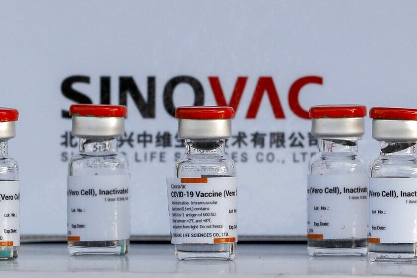 vacuna sinovac | laboratorio sinovac
